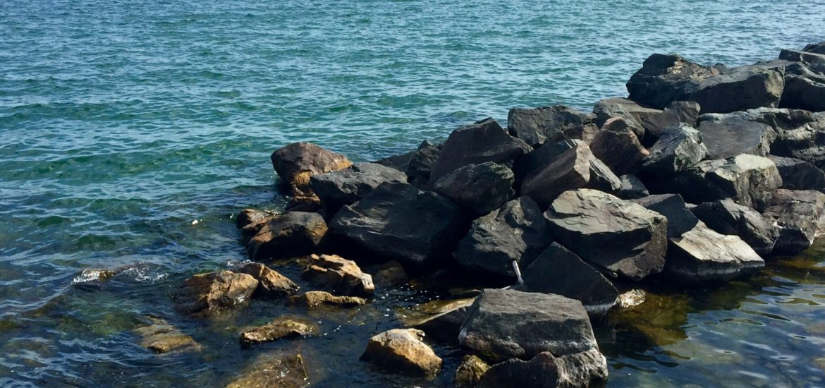 Toronto Island Water Front | How Many Hours Goes Into Blogging?