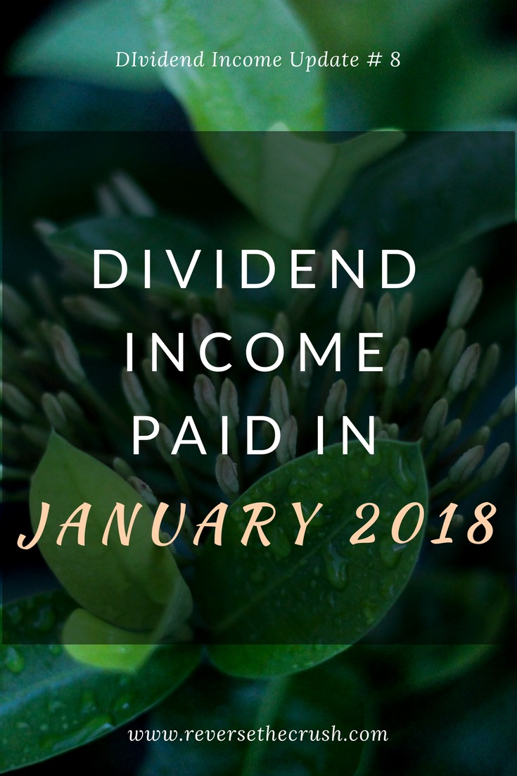 dividend income paid